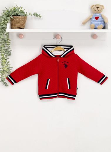 U.S. Polo Assn. Lisanslı  Bebek Sweatshirt Kırmızı